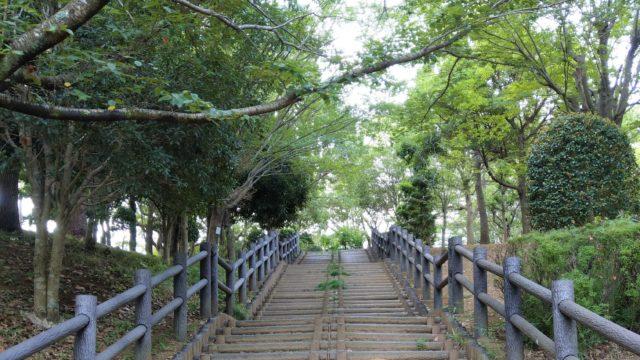 森林の階段