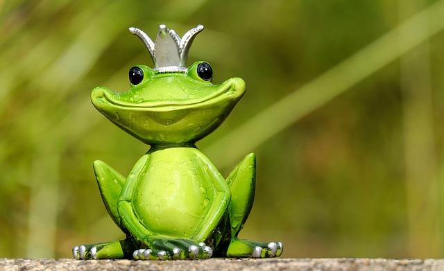 蛙の王子様