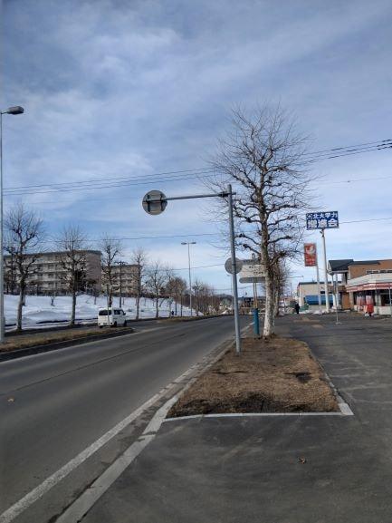 北広島駅の道